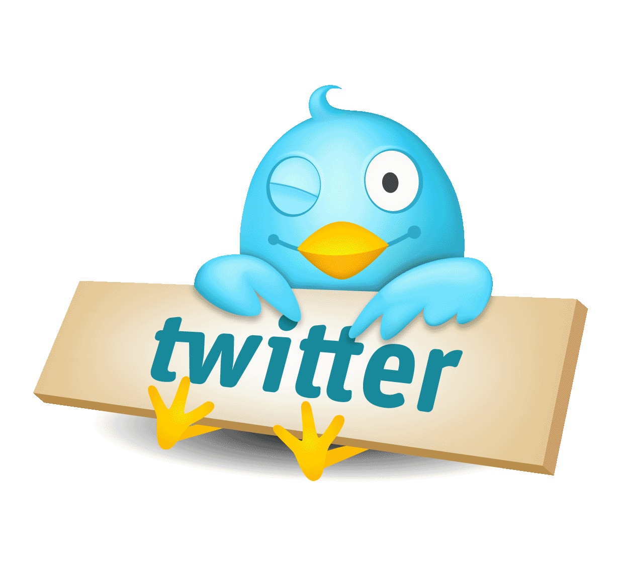 Twitter Basics for the Business Owner